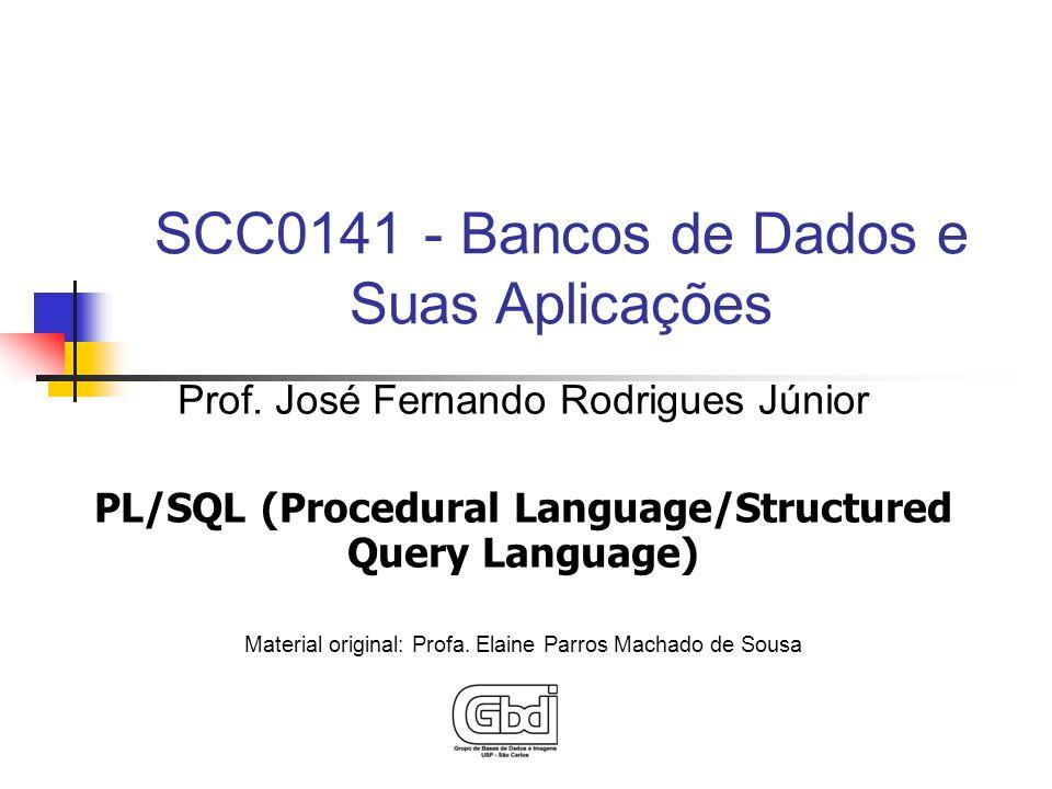 Prof. José Fernando Rodrigues Júnior PL/SQL (Procedural Language/Structured Query Language) Material original: Profa. Elaine Parros Machado de Sousa S
