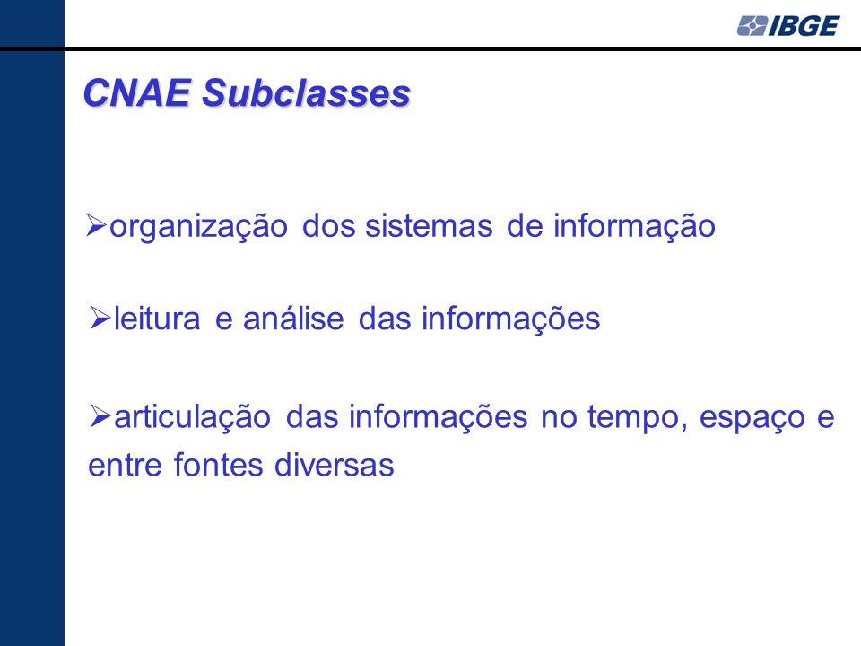 CNAE Subclasses articulação das informações no tempo, espaço e entre fontes diversas organização dos sistemas de informação leitura e análise das informações