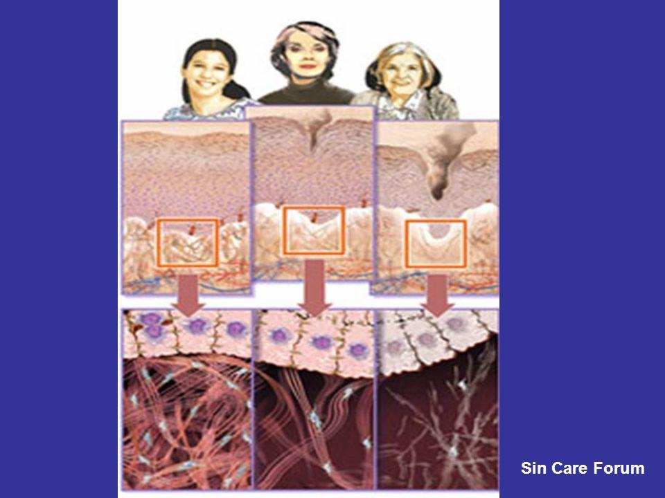 ESQUEMA DA PELE HUMANA Adaptado de Skin Care Forum (google) Trommer et al.