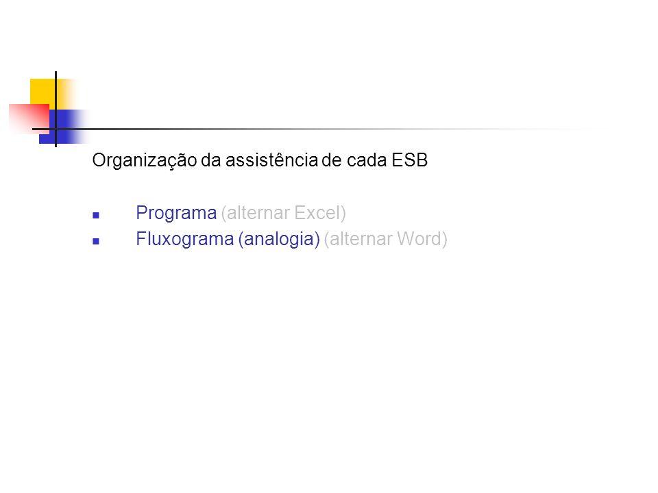 Organização da assistência de cada ESB Programa (alternar Excel) Fluxograma (analogia) (alternar Word)