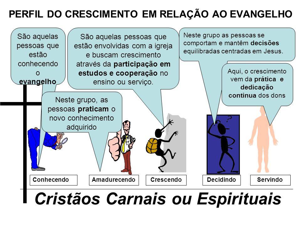 PERFIL DO CRESCIMENTO EM RELAÇÃO AO EVANGELHO Cristãos Carnais ou Espirituais ConhecendoCrescendoAmadurecendoDecidindoServindo São aquelas pessoas que