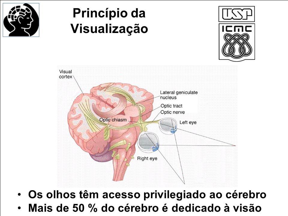 Princípio da Visualização Os olhos têm acesso privilegiado ao cérebro Mais de 50 % do cérebro é dedicado à visão