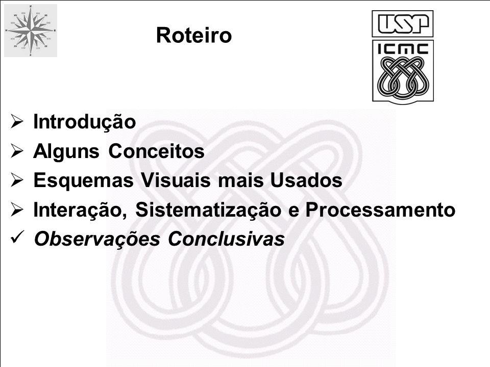 Introdução Alguns Conceitos Esquemas Visuais mais Usados Interação, Sistematização e Processamento Observações Conclusivas Roteiro