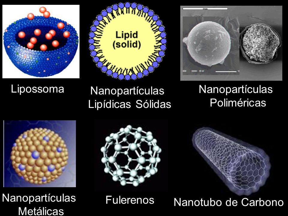 Lipossoma Nanopartículas Poliméricas Nanopartículas Metálicas Nanopartículas Lipídicas Sólidas Fulerenos Nanotubo de Carbono