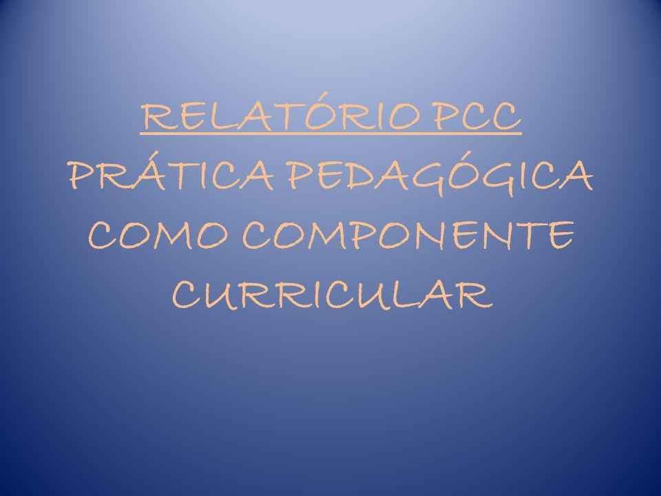 PPCC - ESTRUTURA – O Relatório deverá ser feito em letra ARIAL ou TIMES NEW ROMAN, tamanho 12, devendo constar o máximo de 8 páginas.