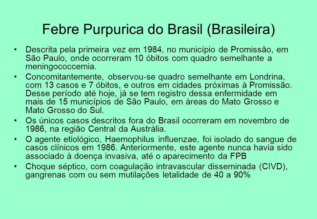 Febre Purpurica do Brasil (Brasileira) Descrita pela primeira vez em 1984, no município de Promissão, em São Paulo, onde ocorreram 10 óbitos com quadr