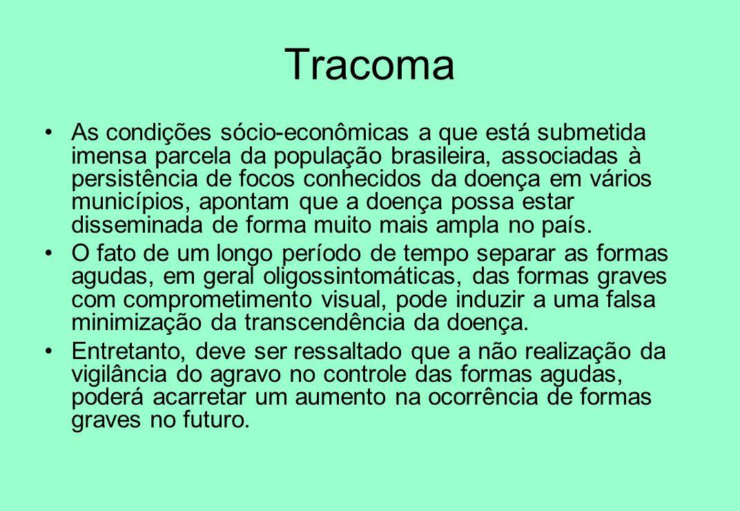 Tracoma As condições sócio-econômicas a que está submetida imensa parcela da população brasileira, associadas à persistência de focos conhecidos da do