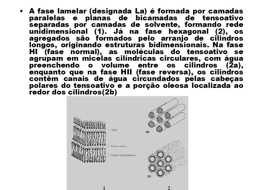 A fase lamelar (designada La) é formada por camadas paralelas e planas de bicamadas de tensoativo separadas por camadas de solvente, formando rede uni