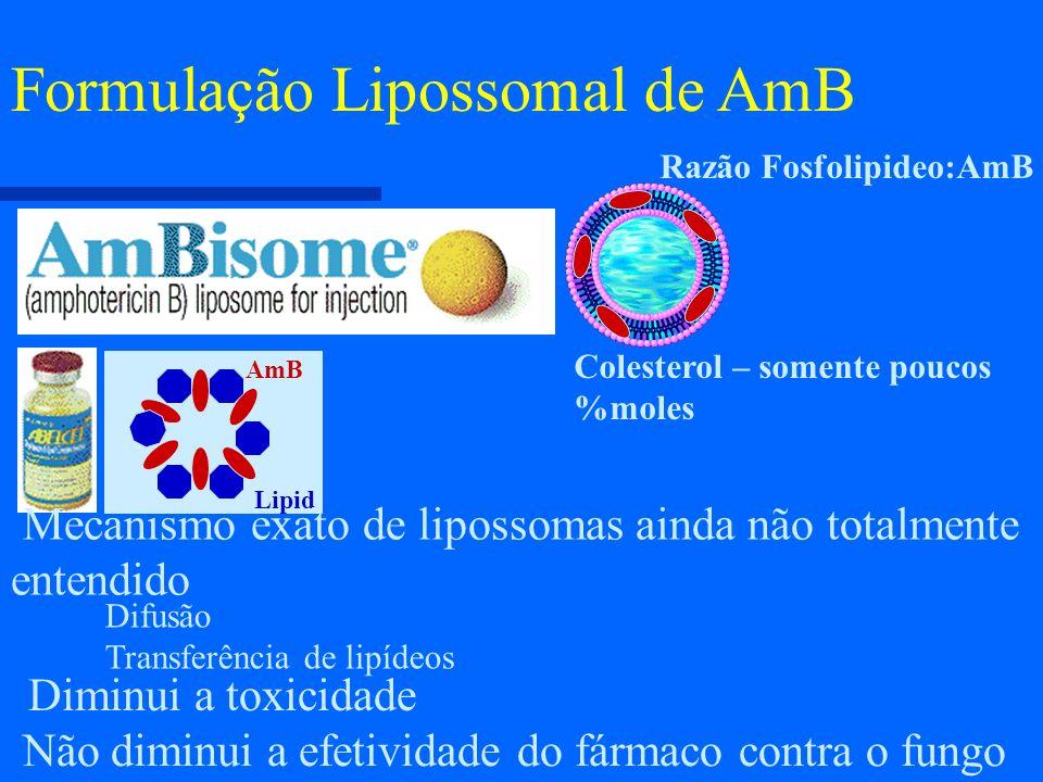Não diminui a efetividade do fármaco contra o fungo Formulação Lipossomal de AmB Diminui a toxicidade Mecanismo exato de lipossomas ainda não totalmen