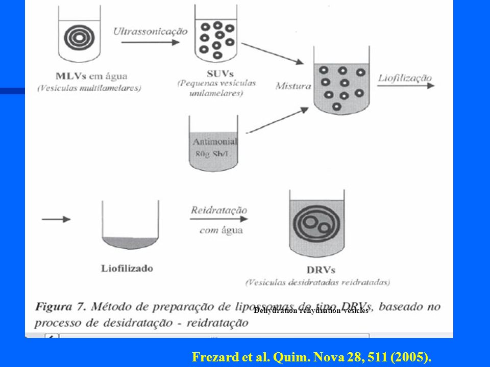 Dehydration rehydration vesicles Frezard et al. Quim. Nova 28, 511 (2005).