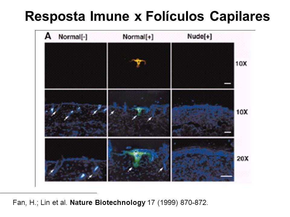 Resposta Imune x Folículos Capilares Fan, H.; Lin et al. Nature Biotechnology 17 (1999) 870-872.