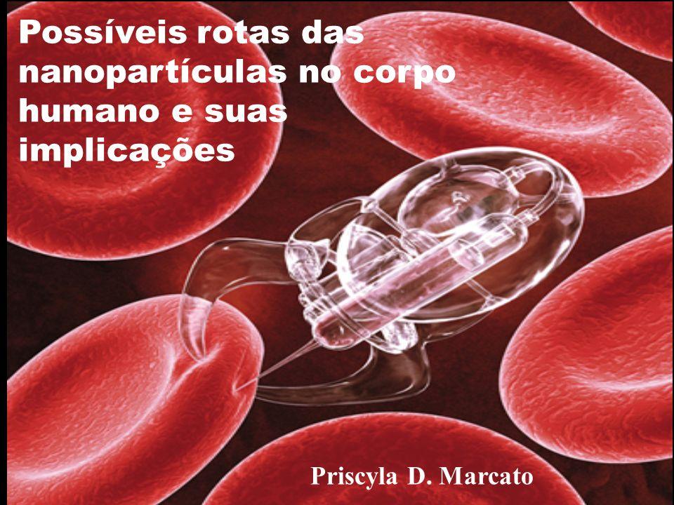 Possíveis rotas das nanopartículas no corpo humano e suas implicações Priscyla D. Marcato