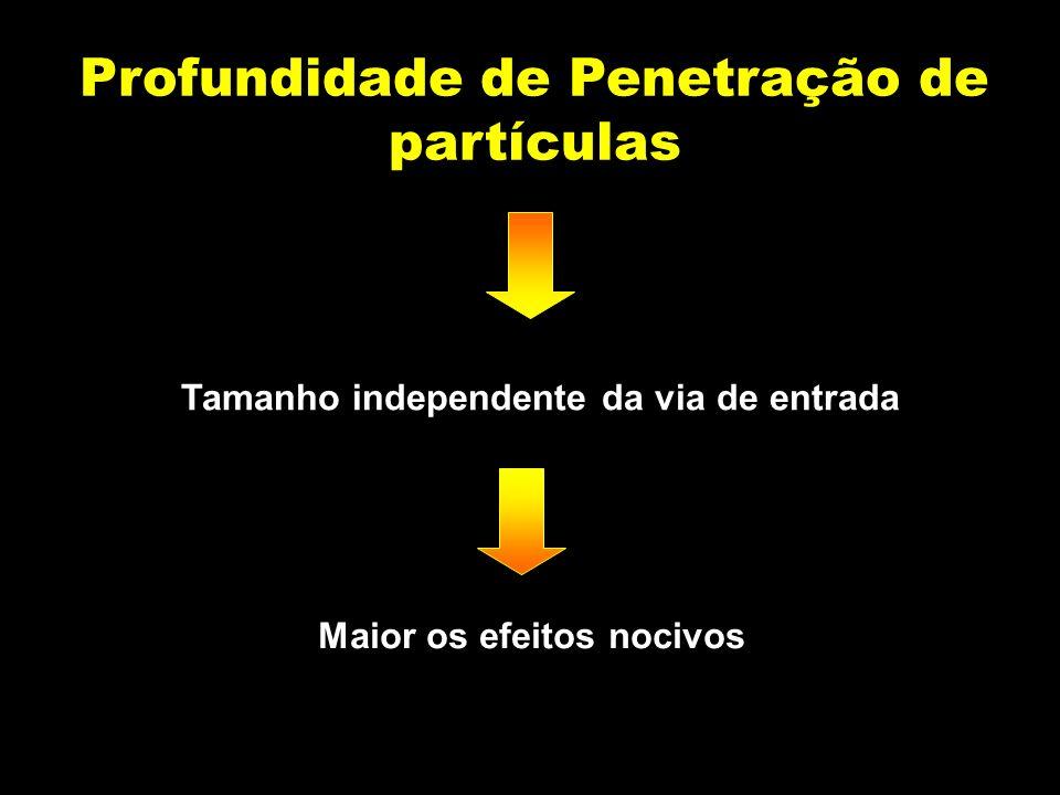 Profundidade de Penetração de partículas Tamanho independente da via de entrada Maior os efeitos nocivos
