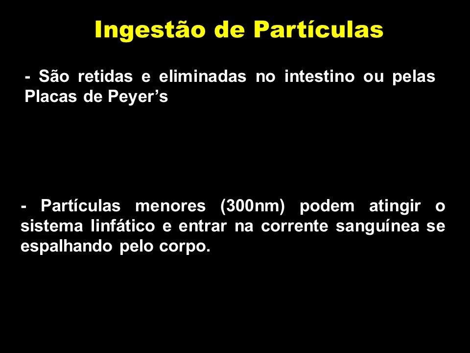 Ingestão de Partículas - São retidas e eliminadas no intestino ou pelas Placas de Peyers - Partículas menores (300nm) podem atingir o sistema linfático e entrar na corrente sanguínea se espalhando pelo corpo.