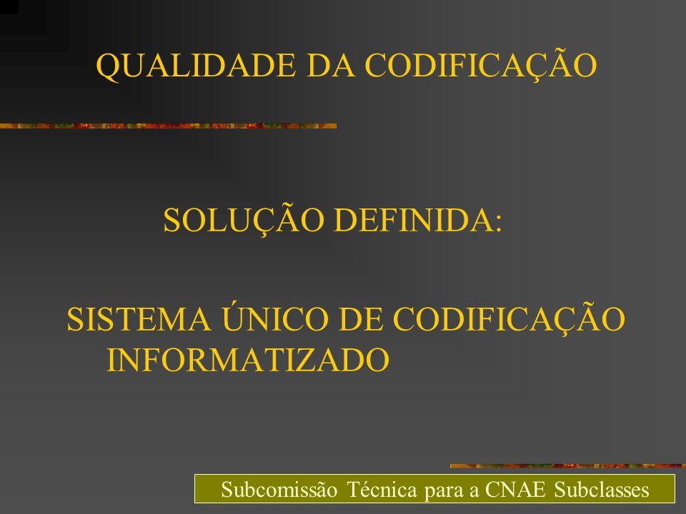 QUALIDADE DA CODIFICAÇÃO SOLUÇÃO DEFINIDA: SISTEMA ÚNICO DE CODIFICAÇÃO INFORMATIZADO Subcomissão Técnica para a CNAE Subclasses