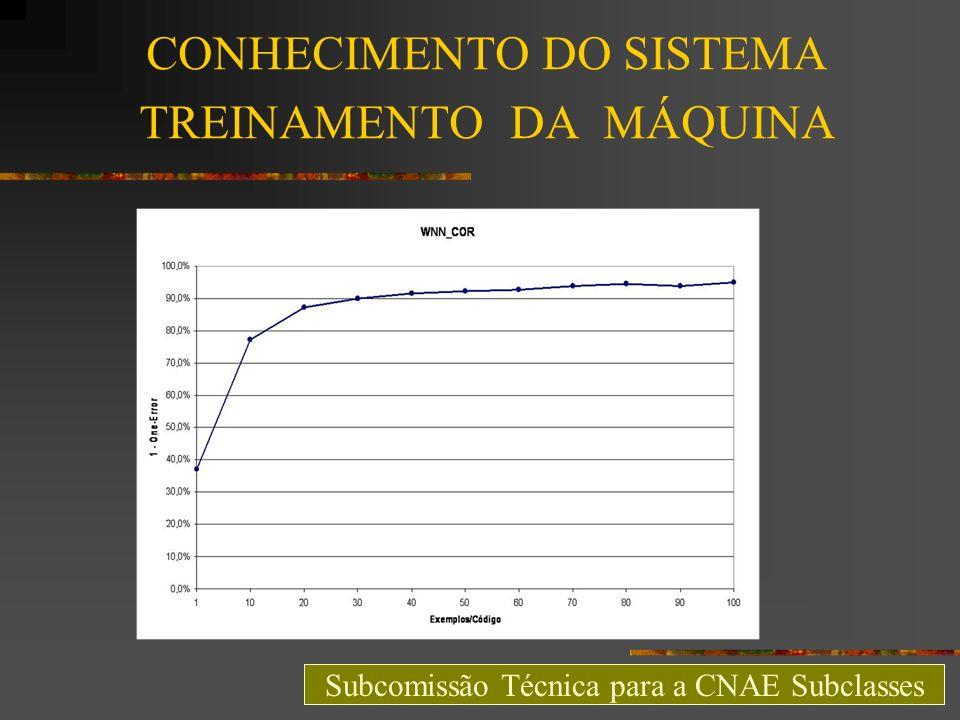 CONHECIMENTO DO SISTEMA TREINAMENTO DA MÁQUINA Subcomissão Técnica para a CNAE Subclasses