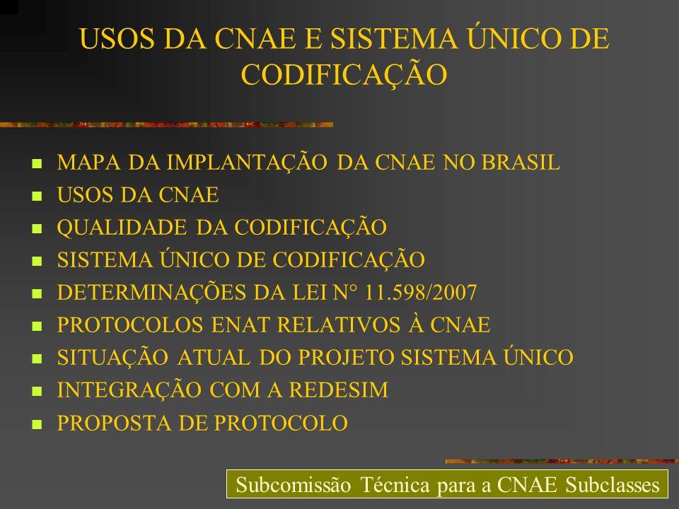 USOS DA CNAE E SISTEMA ÚNICO DE CODIFICAÇÃO MAPA DA IMPLANTAÇÃO DA CNAE NO BRASIL USOS DA CNAE QUALIDADE DA CODIFICAÇÃO SISTEMA ÚNICO DE CODIFICAÇÃO D