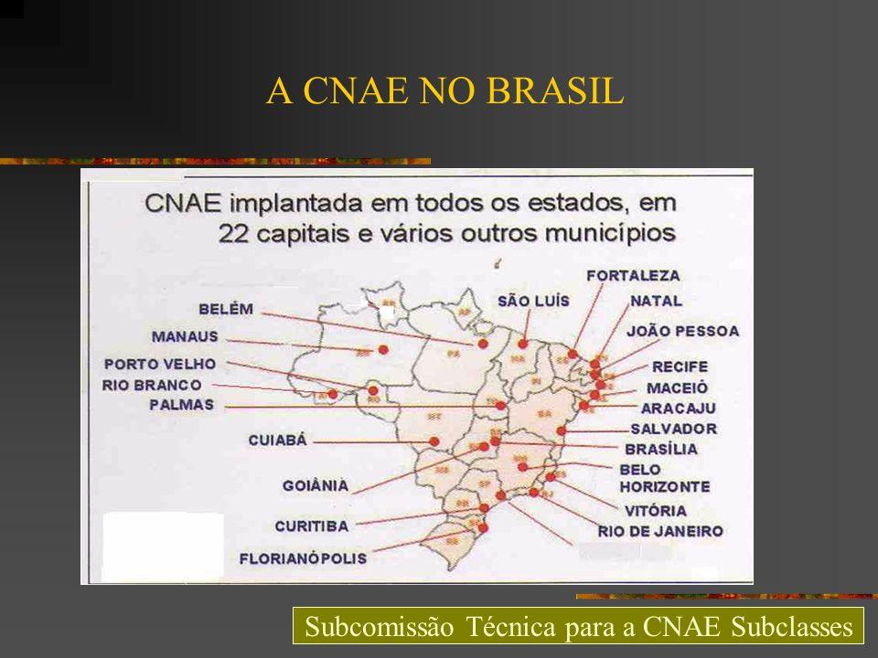 A CNAE NO BRASIL Subcomissão Técnica para a CNAE Subclasses