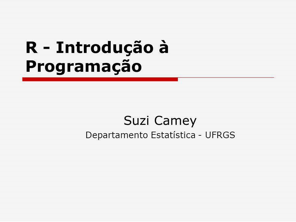 R - Introdução à Programação Suzi Camey Departamento Estatística - UFRGS