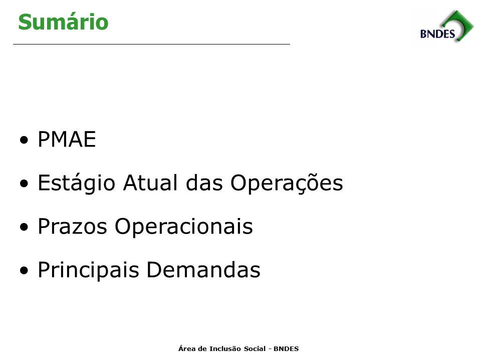 Área de Inclusão Social - BNDES Sumário PMAE Estágio Atual das Operações Prazos Operacionais Principais Demandas