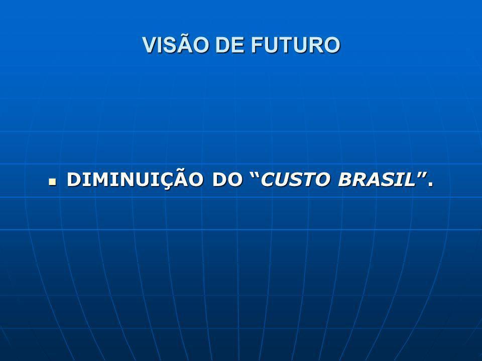 VISÃO DE FUTURO DIMINUIÇÃO DO CUSTO BRASIL. DIMINUIÇÃO DO CUSTO BRASIL.