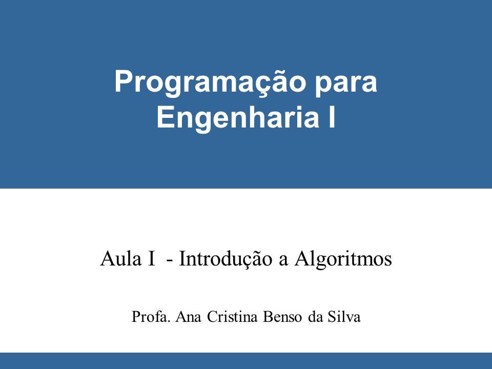 © Ana Cristina Benso da Silva Programação para Engenharia I Conceitos Básicos l Variáveis x Constantes a = x + 5 a, x e 5 são variáveis ou constantes.