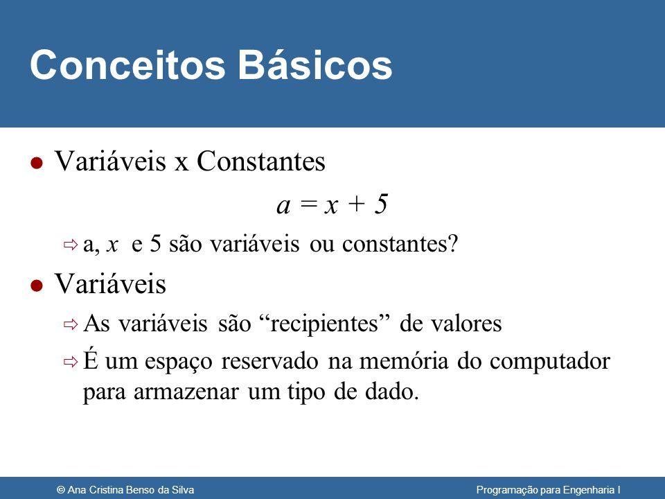 © Ana Cristina Benso da Silva Programação para Engenharia I Variáveis l Então a = x + 5 Se x = 3 então a posição de memória indicada por x conterá o valor 3 após o resultado da operação, a posição de memória indicada por a conterá o valor 8.