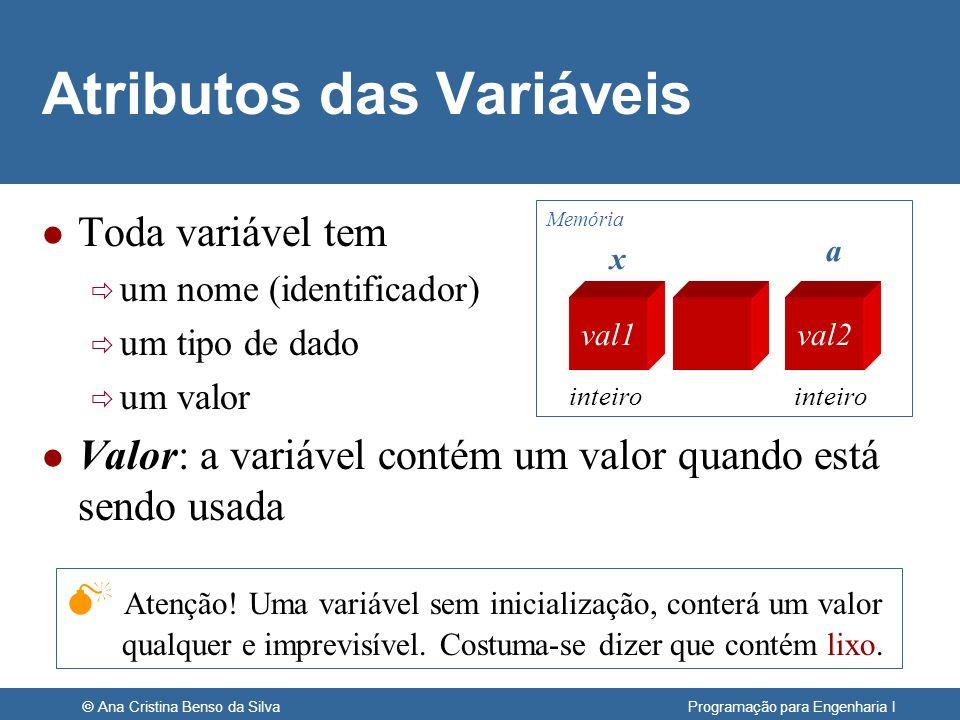 © Ana Cristina Benso da Silva Programação para Engenharia I Atributos das Variáveis l Toda variável tem um nome (identificador) um tipo de dado um val