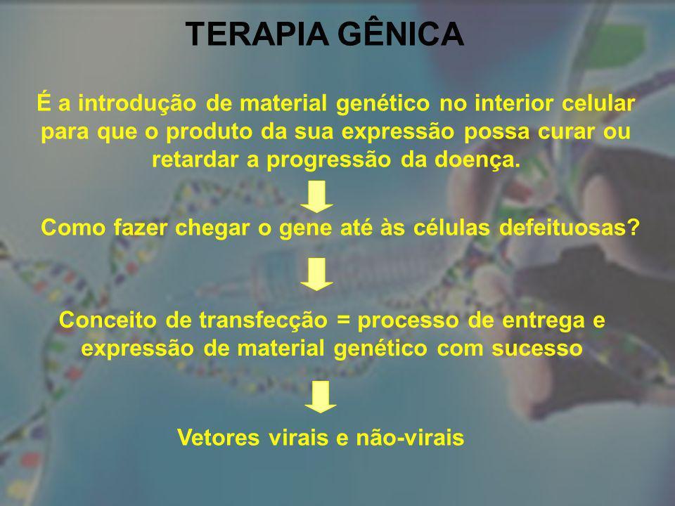 TERAPIA GÊNICA É a introdução de material genético no interior celular para que o produto da sua expressão possa curar ou retardar a progressão da doe
