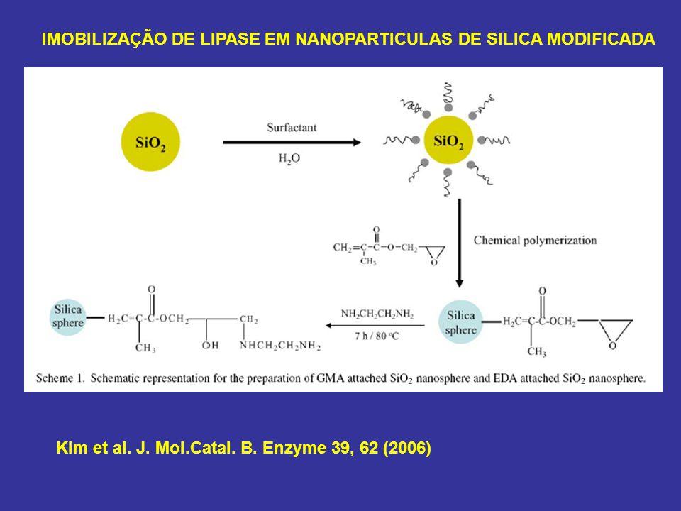 Kim et al. J. Mol.Catal. B. Enzyme 39, 62 (2006) IMOBILIZAÇÃO DE LIPASE EM NANOPARTICULAS DE SILICA MODIFICADA