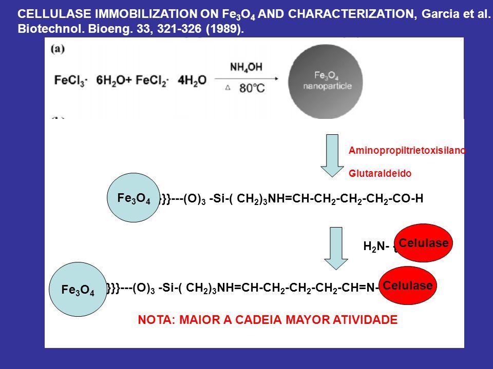 Aminopropiltrietoxisilano Glutaraldeido Fe 3 O 4 )}}}---(O) 3 -Si-( CH 2 ) 3 NH=CH-CH 2 -CH 2 -CH 2 -CO-H H 2 N- {Enzyme} Fe 3 O 4 )}}}---(O) 3 -Si-(