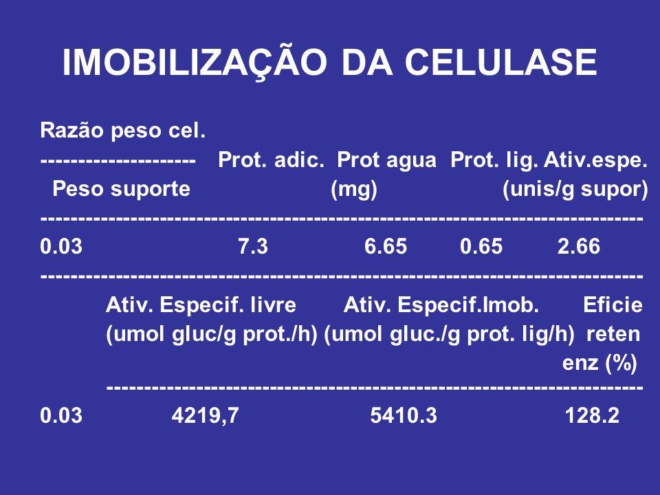 IMOBILIZAÇÃO DA CELULASE Razão peso cel. --------------------- Prot. adic. Prot agua Prot. lig. Ativ.espe. Peso suporte (mg) (unis/g supor) ----------