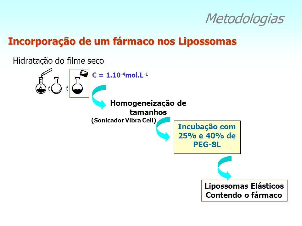 Metodologias Incorporação de um fármaco nos Lipossomas Hidratação do filme seco Homogeneização de tamanhos Incubação com 25% e 40% de PEG-8L (Sonicado