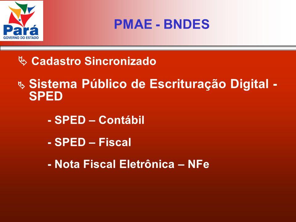 Cadastro Sincronizado Sistema Público de Escrituração Digital - SPED - SPED – Contábil - SPED – Fiscal - Nota Fiscal Eletrônica – NFe PMAE - BNDES
