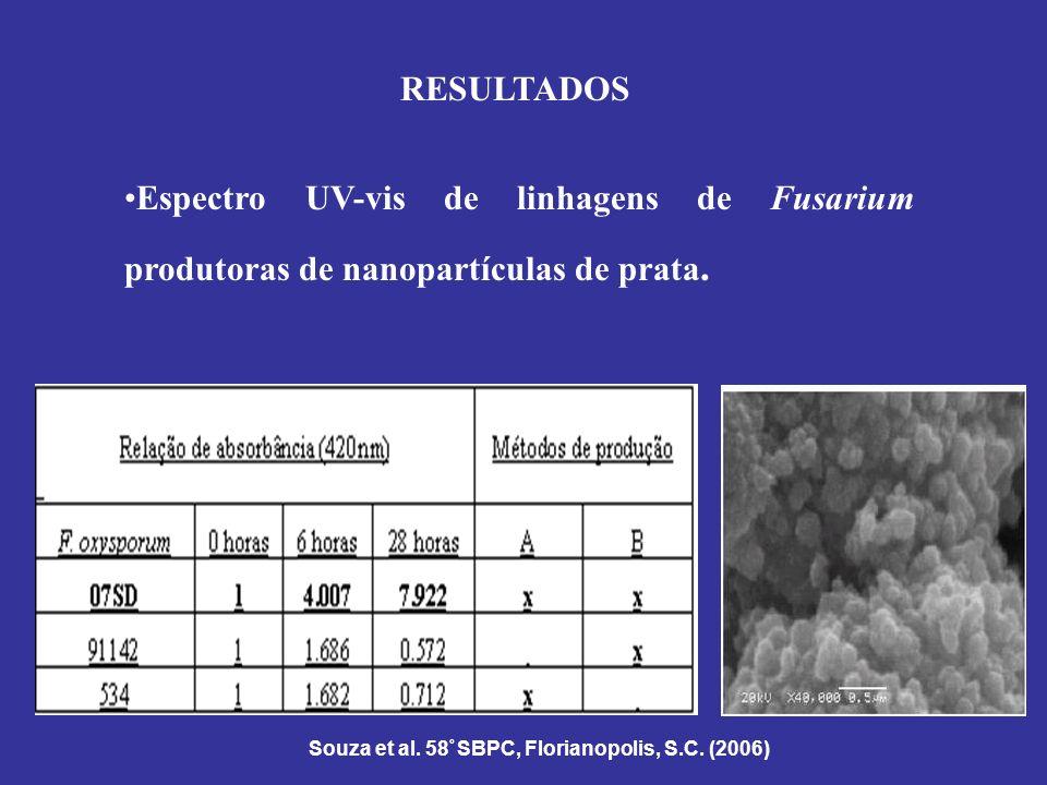 RESULTADOS Espectro UV-vis de linhagens de Fusarium produtoras de nanopartículas de prata. Souza et al. 58 º SBPC, Florianopolis, S.C. (2006)