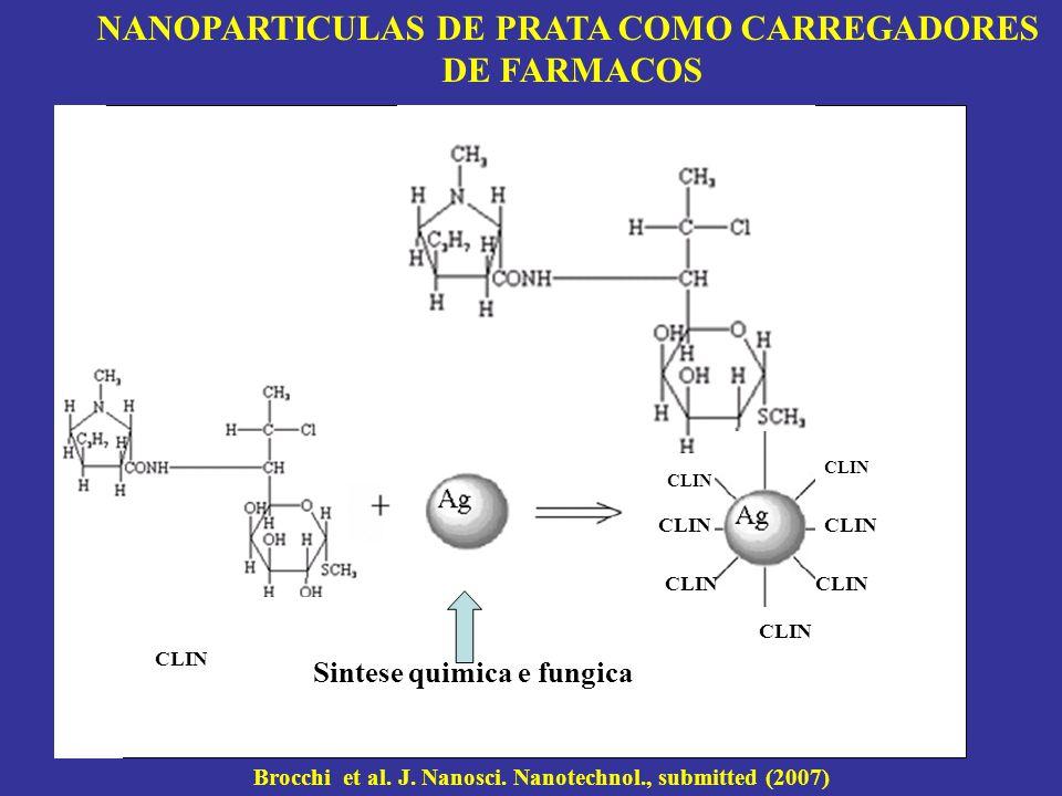 CLIN Sintese quimica e fungica NANOPARTICULAS DE PRATA COMO CARREGADORES DE FARMACOS Brocchi et al. J. Nanosci. Nanotechnol., submitted (2007)