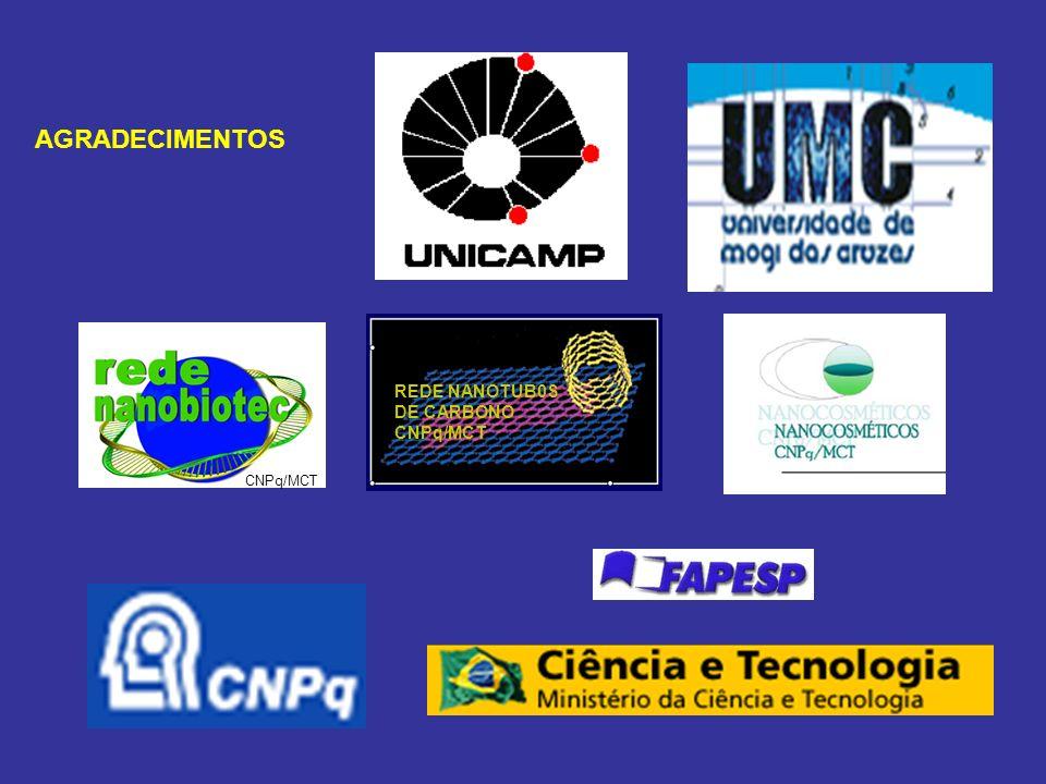 REDE NANOTUB0S DE CARBONO CNPq/MCT AGRADECIMENTOS CNPq/MCT