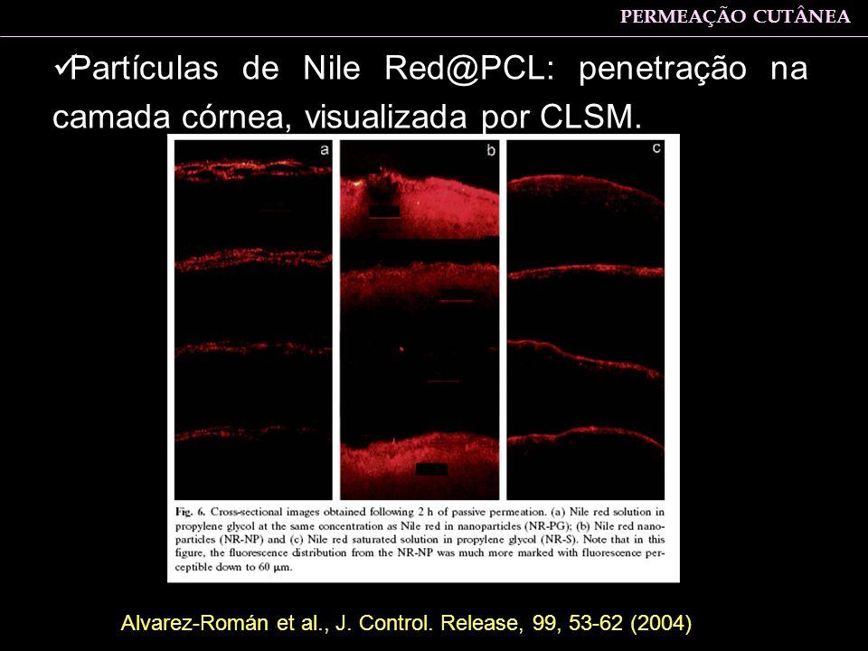 Partículas de Nile Red@PCL: penetração na camada córnea, visualizada por CLSM. PERMEAÇÃO CUTÂNEA Alvarez-Román et al., J. Control. Release, 99, 53-62