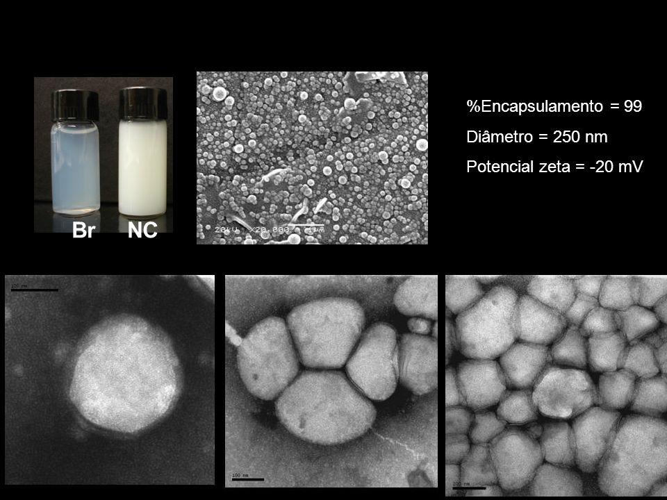 Zaine: Foi empregado etanol com a finalidade de se remover o surfactante liipofílico Zaine: Foi empregado etanol com a finalidade de se remover o surf