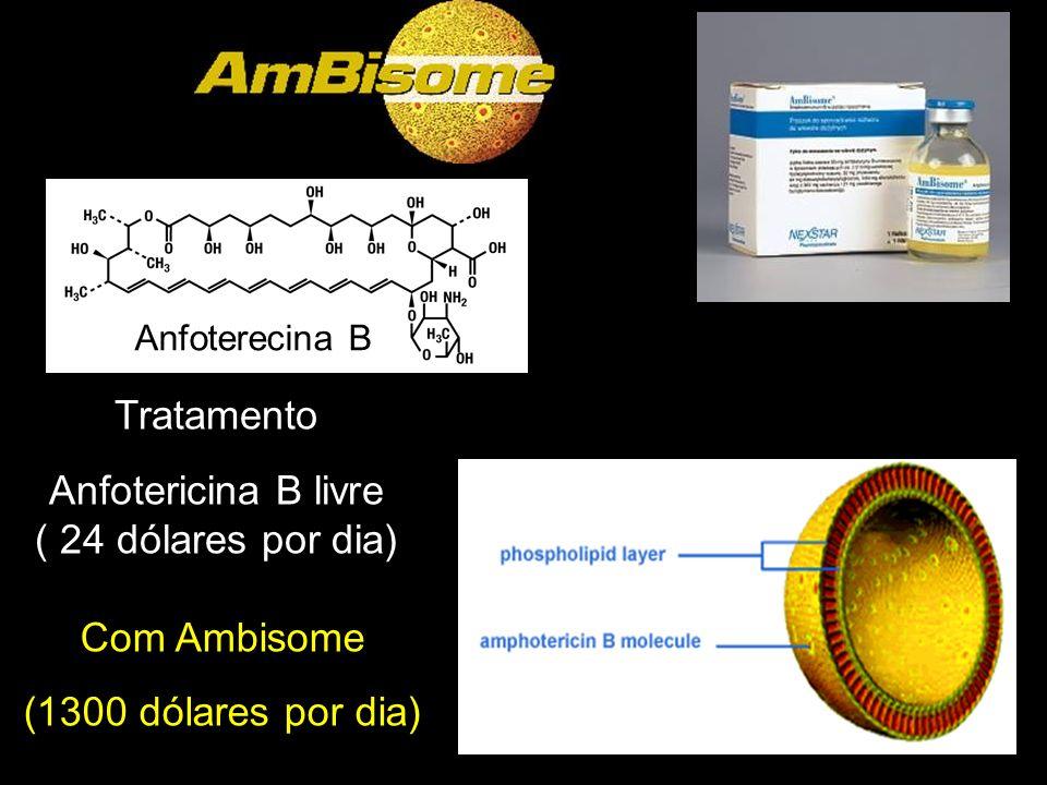 Com Ambisome (1300 dólares por dia) Tratamento Anfotericina B livre ( 24 dólares por dia) Anfoterecina B