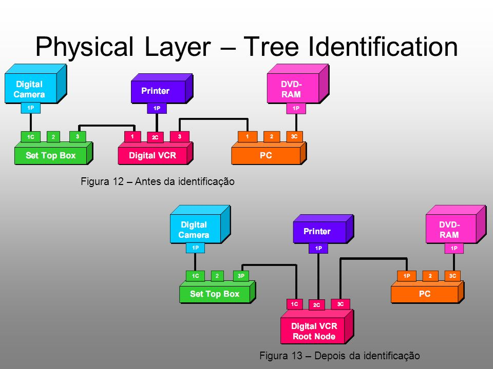 Physical Layer – Tree Identification Figura 12 – Antes da identificação Figura 13 – Depois da identificação