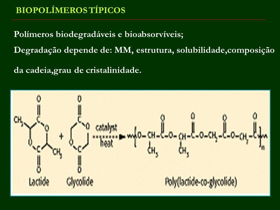 BIOPOLÍMEROS TÍPICOS Polímeros biodegradáveis e bioabsorvíveis; Degradação depende de: MM, estrutura, solubilidade,composição da cadeia,grau de crista