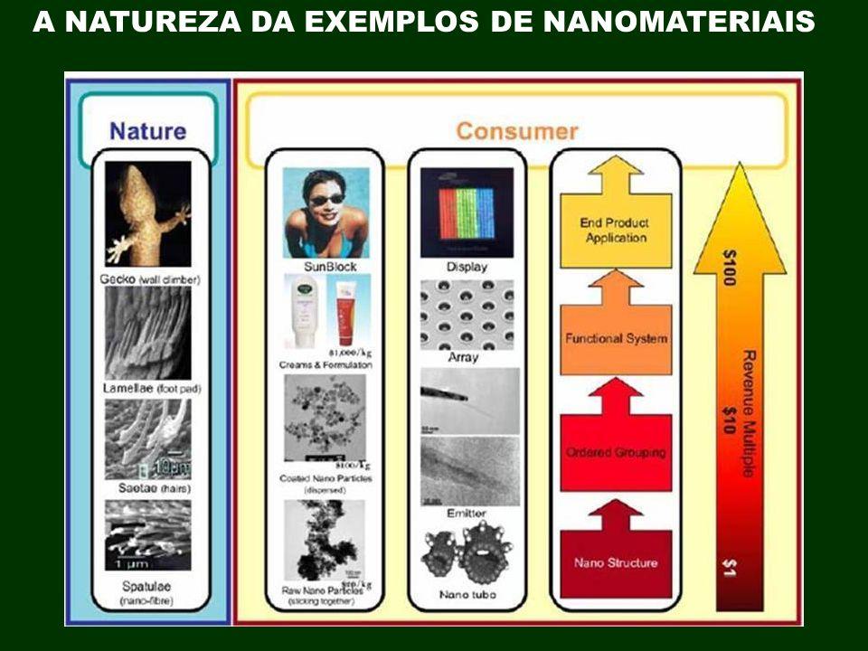 NANOTECNOLOGIA IMPACTARA A MAIORIA DAS ÁREAS EM NOSSA SOCIEDADE