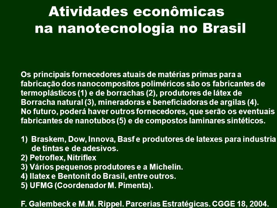 Atividades econômicas na nanotecnologia no Brasil Os principais fornecedores atuais de matérias primas para a fabricação dos nanocompositos polimérico