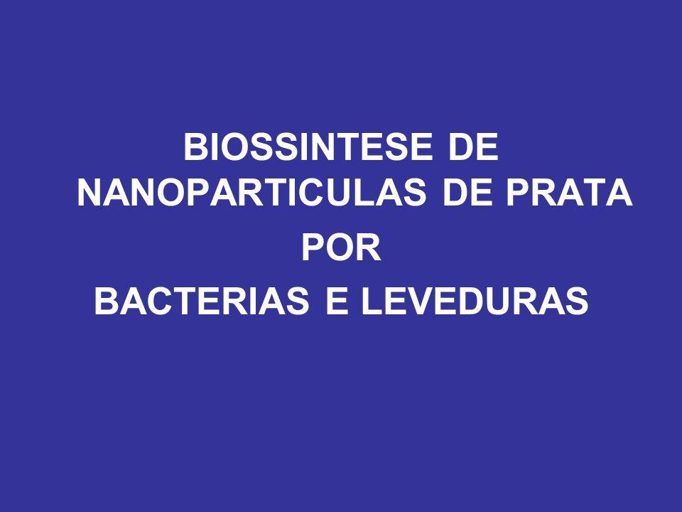 Enterobacter clocae Shahverdi et al.Process Biochem.