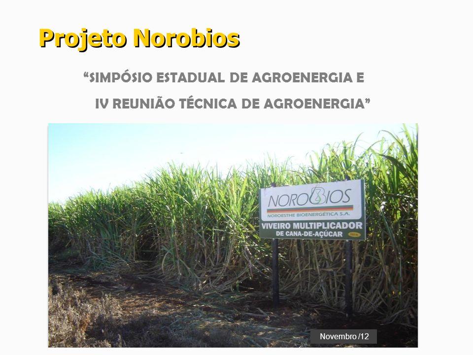 SIMPÓSIO ESTADUAL DE AGROENERGIA E IV REUNIÃO TÉCNICA DE AGROENERGIA Projeto Norobios Novembro /12