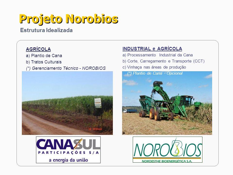 Projeto Norobios Estrutura Idealizada AGRÍCOLA a) Plantio de Cana b) Tratos Culturais (*) Gerenciamento Técnico - NOROBIOS INDUSTRIAL e AGRÍCOLA a) Pr