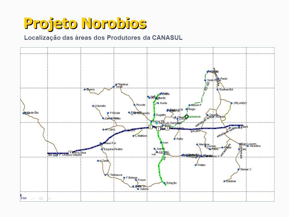 Localização das áreas dos Produtores da CANASUL Projeto Norobios