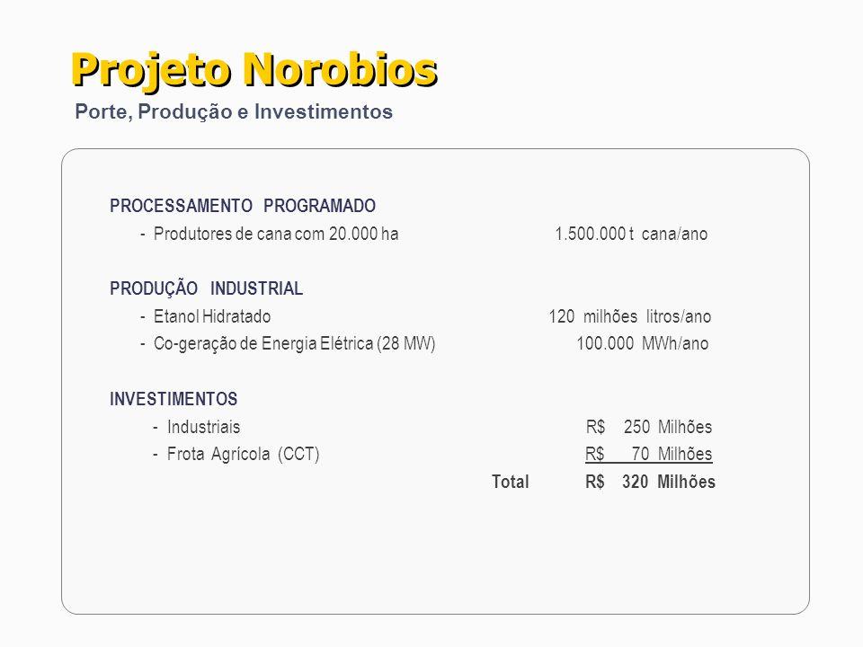 PROCESSAMENTO PROGRAMADO - Produtores de cana com 20.000 ha 1.500.000 t cana/ano PRODUÇÃO INDUSTRIAL - Etanol Hidratado 120 milhões litros/ano - Co-ge