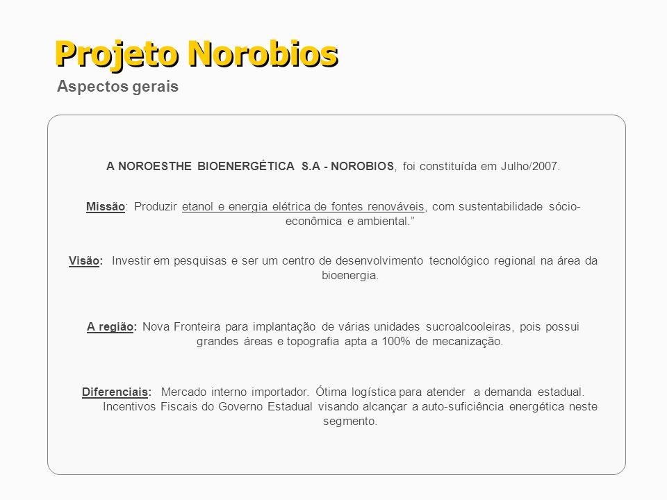 A NOROESTHE BIOENERGÉTICA S.A - NOROBIOS, foi constituída em Julho/2007. Missão: Produzir etanol e energia elétrica de fontes renováveis, com sustenta